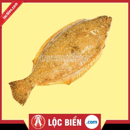 Cá bơn vàng Hàn Quốc